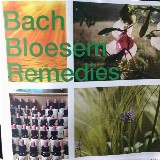 Bach Bloesem Remedies 'The medicine of the future'
