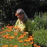 Thea van Hoof