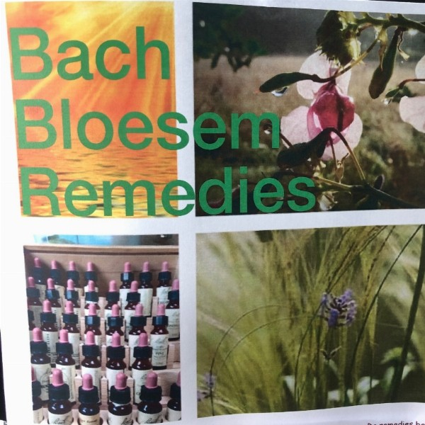 Bach Bloesem Remedies 'The medicine of the future' | Warnsveld