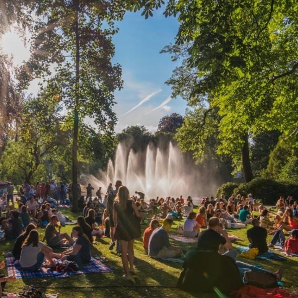 Hoopie Picknick Palm Parkies | Breda