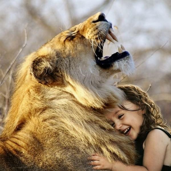 LIONS gate 8-8, help gaia | Driebergen