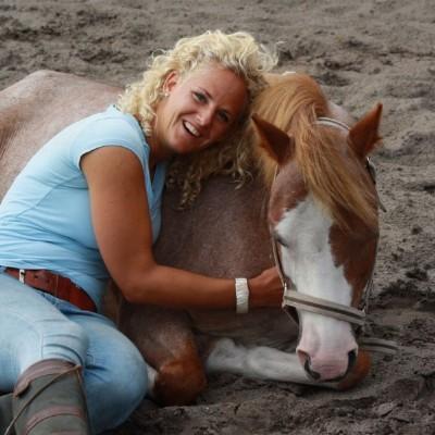VOEL! Coaching met paarden