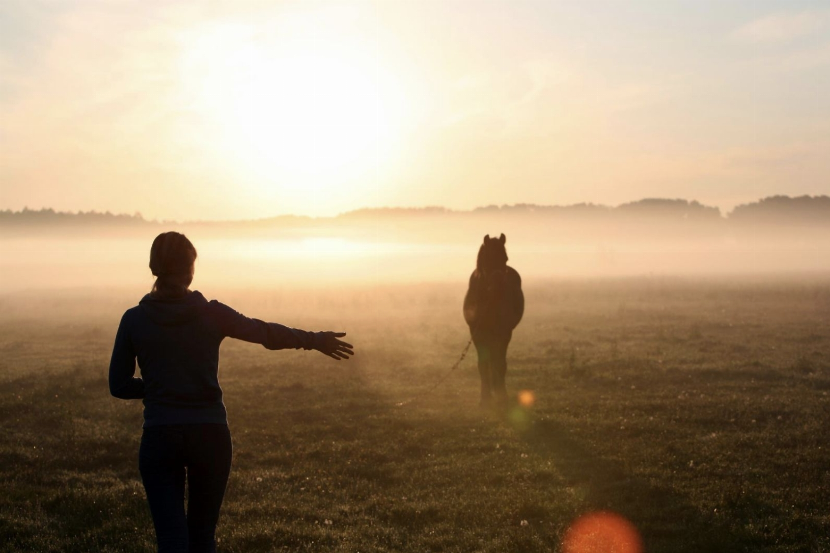 Equi-valentie | Balans tussen hoofd, hart en buik met de wijsheid van de paardenkudde