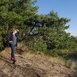 Stromen - workshop