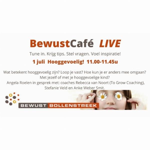 BewustCafé Live Online 'Hooggevoelig? Hooggevoelige kinderen?' | Online