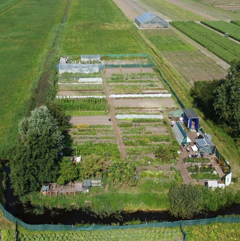 Elsgeesterhof Open Tuin | Voorhout