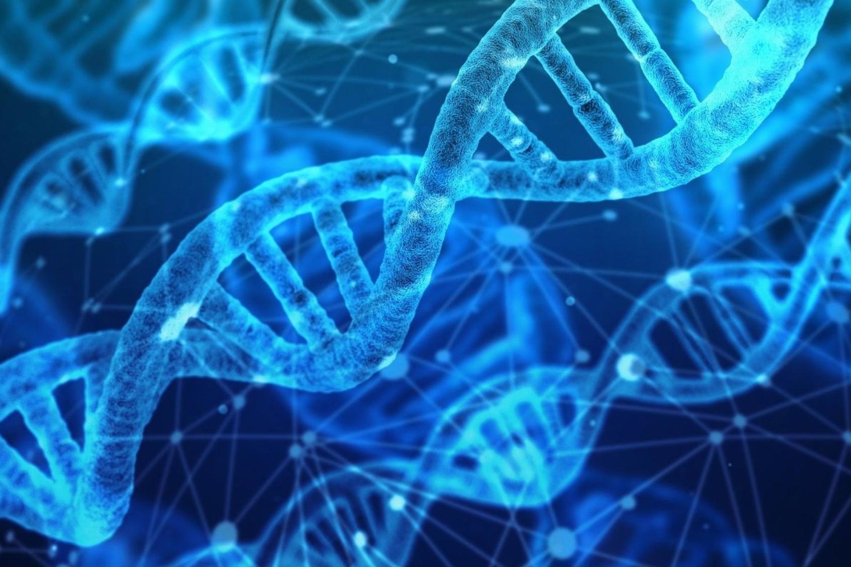 DNA zelf-healing