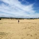 Dag van de stilte: zwerven en verstillen in het Kootwijkerzand (Veluwe) door