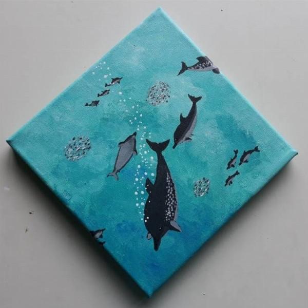 Zwemmen met dolfijnen in de Azoren | Ponta Delgada op Sao Miguel, Azoren