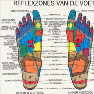 Reflexzonetherapie Fleur-de-Lys