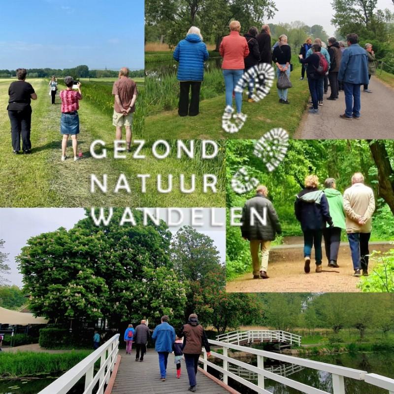 Gezond Natuur Wandelen - even eruit en Vitamine G opdoen | Wandel mee of word vrijwilliger | Delft