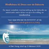 Zwangerschapscursus Mindfulness bij Stress voor de Geboorte door Irena Veringa