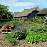 Excursie naar boerderij Landzicht in Strijen   Den Haag