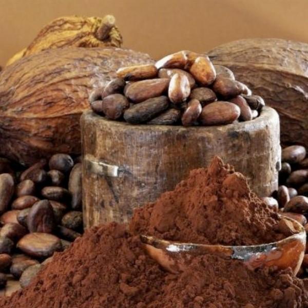 Cacao Ceremonie met Volle Maan | Den Haag