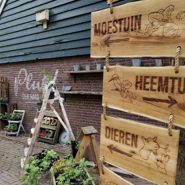 Stekjesruil bij Pluk! Den Haag   Den Haag