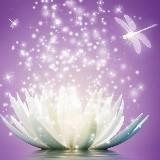 Vuurvrouw - Spirituele Transformatie - Pad van de Wijze Crone door Cora van Ham