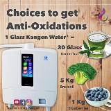 Workshop water en gezondheid, alles over antioxidant rijk Kangen water (ERW)