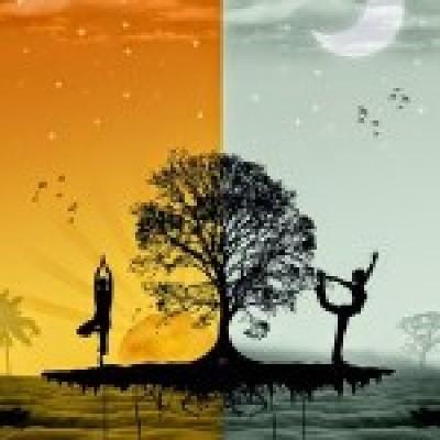 Sun You Yoga