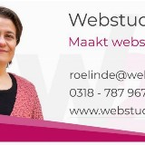 "SEO Workshop ""hoger in Google door Roelinde Brons"