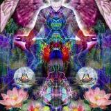 Trance Mediumschap (4 dagen)