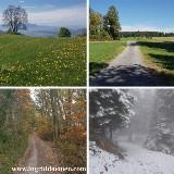 Mind-Walk® Jaartraining (10 maandelijkse wandelingen) door