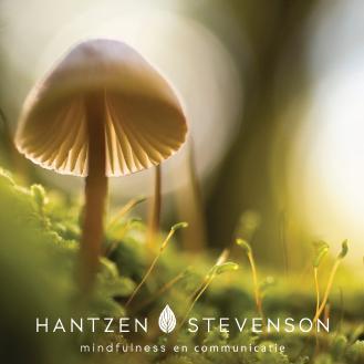 Hantzen Stevenson   Mindfulness Haren