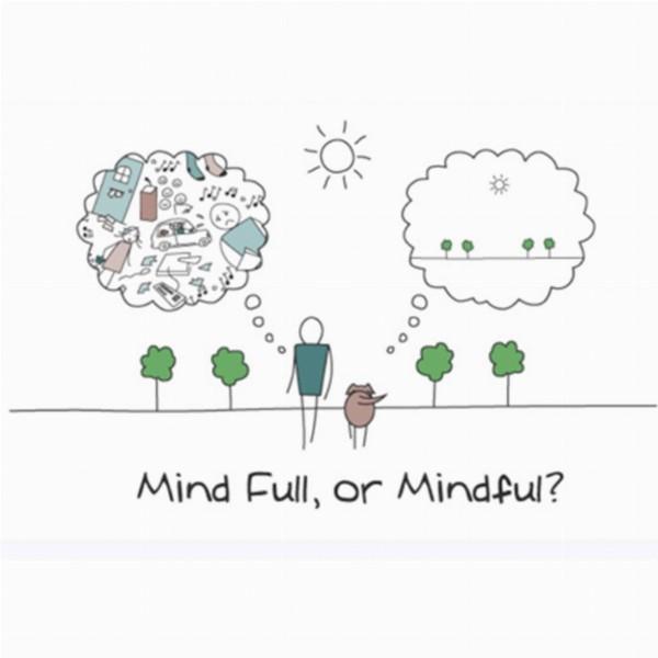 Kennismaking Mindfulness | Haren Groningen