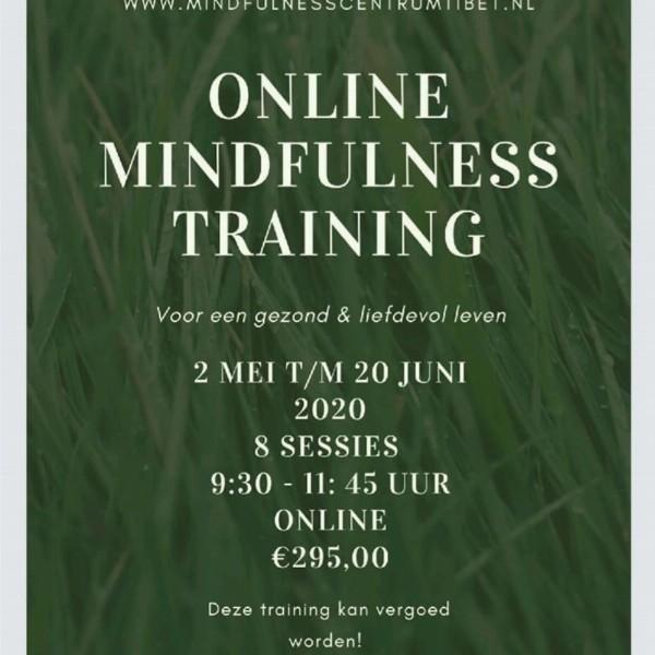 Mindfulness Training | Groningen