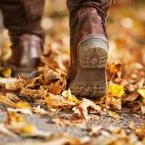 Mindful wandelen in het Kraansvlak (verlate Nieuwjaarswandeling)