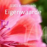 1001 downloads 'Eigenwaarde - online event