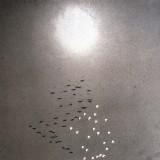 Training: Kum Nye en ons spirituele lichaam