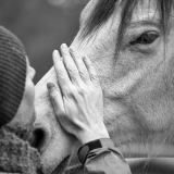 Workshop Paardencoaching 'Roeping vs Blokkade' door