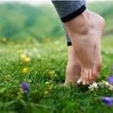 Workshop: Blote voeten wandeling en qigong.. door CNQHaarlem