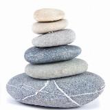 Yoga & Mindfulness Dag Retreat op Landgoed Duin & Kruidberg