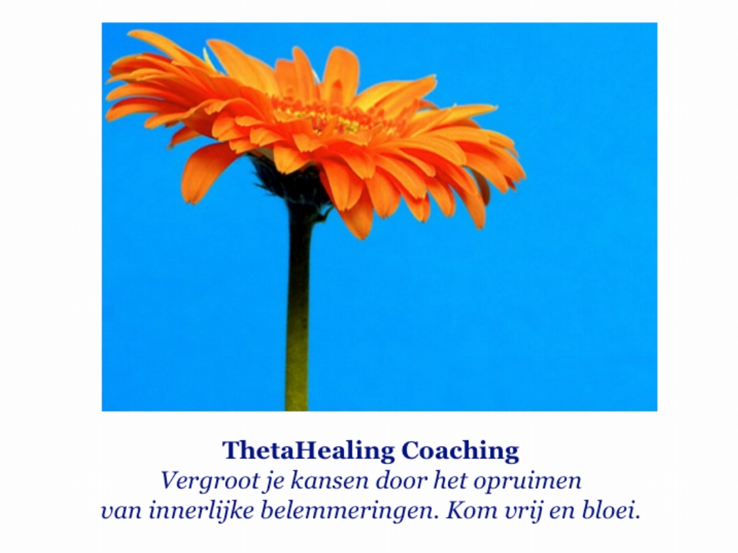 Mind Detective-Manon     Thetahealing Coaching, Therapie en Training