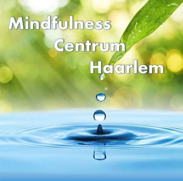 Mindfulness Centrum Haarlem