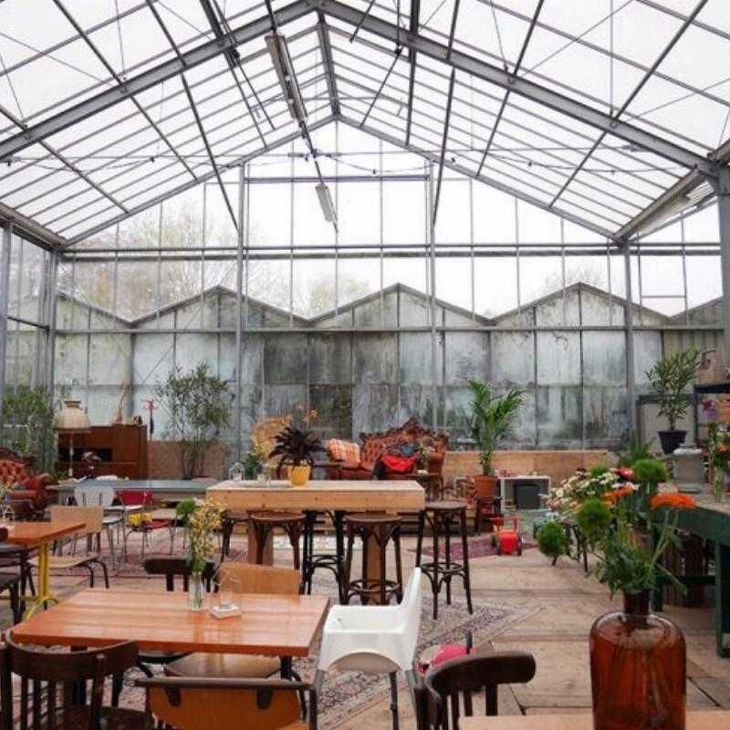 Ondernemerscafé Bewust Haarlem bij Het Kweekcafé | Haarlem