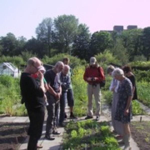 Stichting Haarlem Food Future-Haarlem