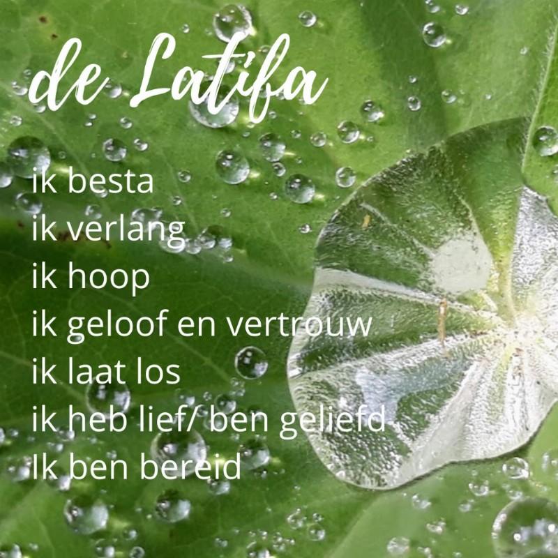 Jaargroep Innerlijke vrijheid - zang, dans en de Latifa meditatie (7x) | Haarlem