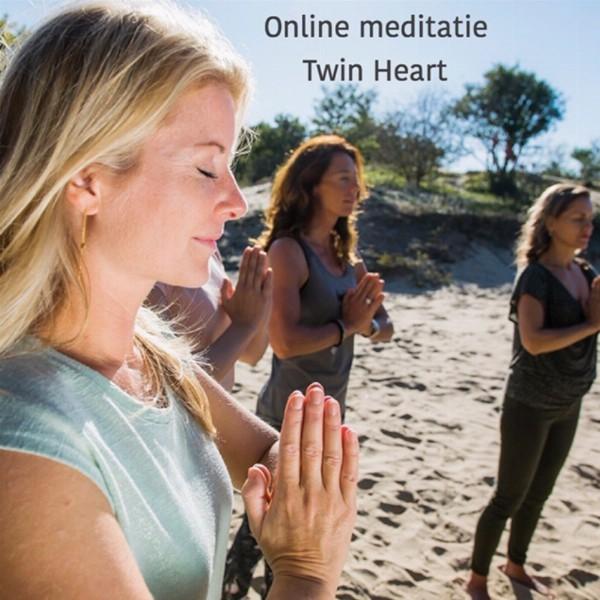 Online: Twin Hearts meditatie met groepsheling (iedere woensdagavond)   Haarlem