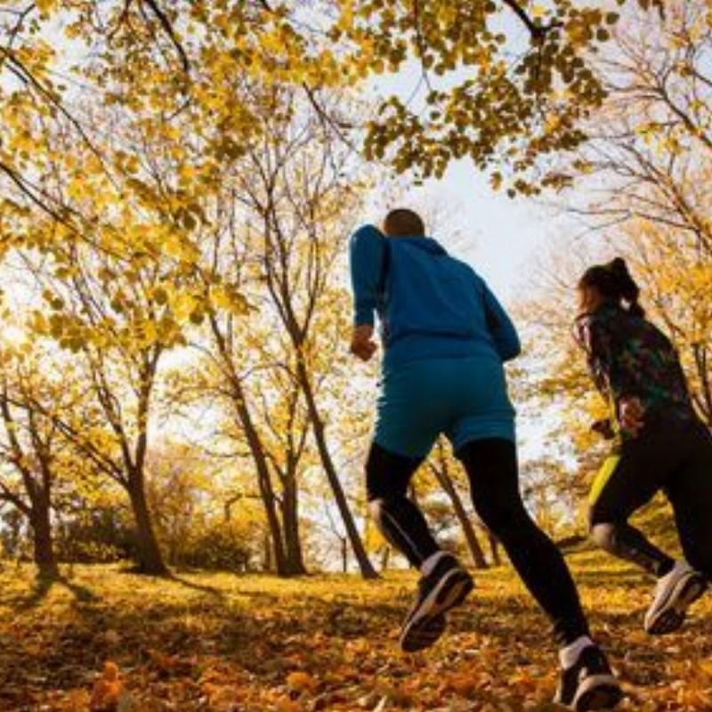 Cursus Mindful Run in de Kennemerduinen | Bloemendaal