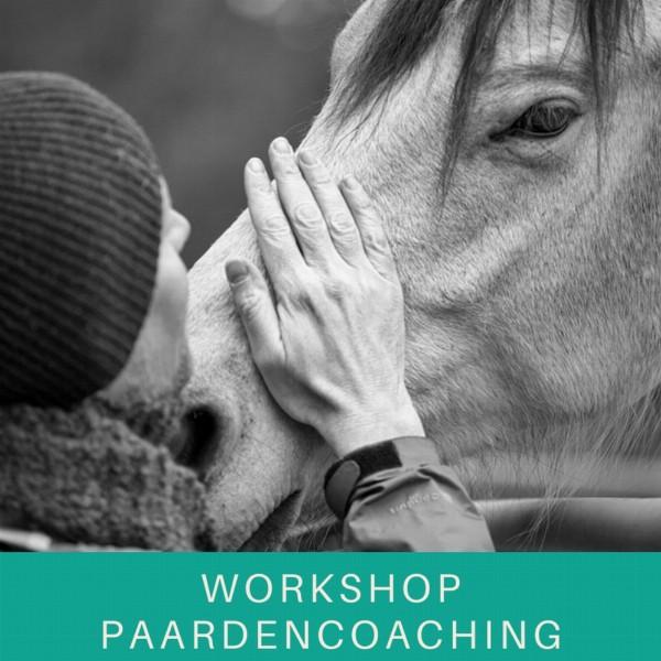 Workshop Paardencoaching 'Roeping vs Blokkade' | Haarlem