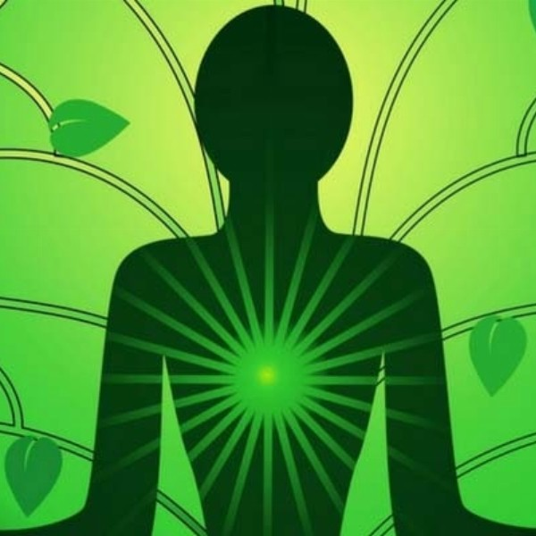 Karunash Hartchakra Meditatie & Klankschalen Ontspanning | Hoofddorp