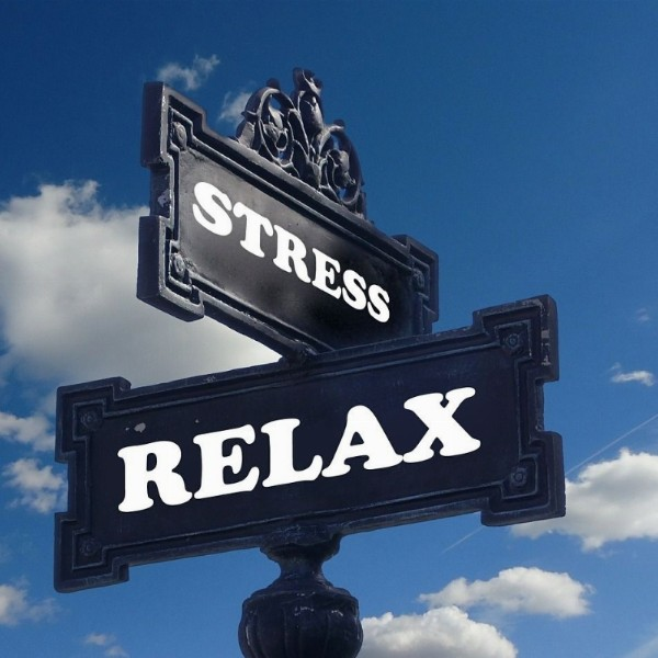 Stress en burn-out preventie en herstelprogramma | Hoofddorp