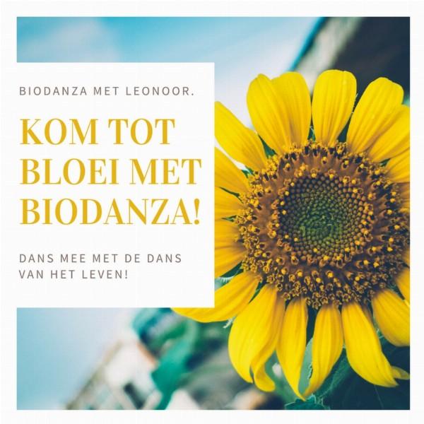 Proefles Biodanza in de Nationale Biodanzaweek   Leiden