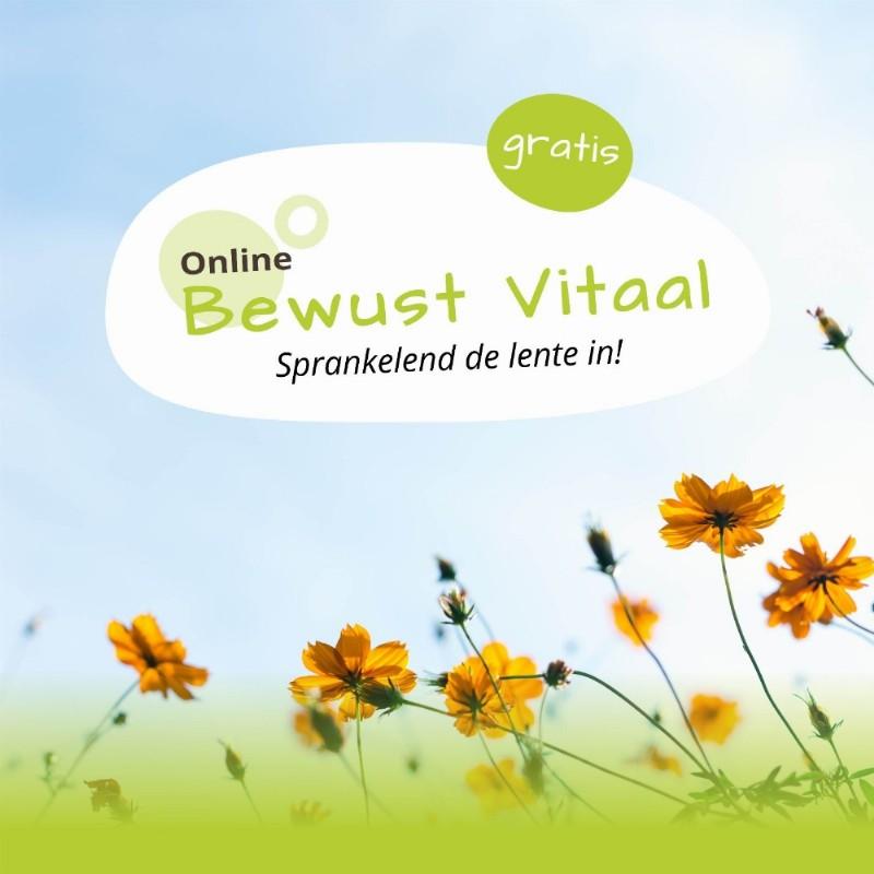 Bewust Nijmegen: Netwerkmiddag @ De Kleine Wiel | Nijmegen (Lent)