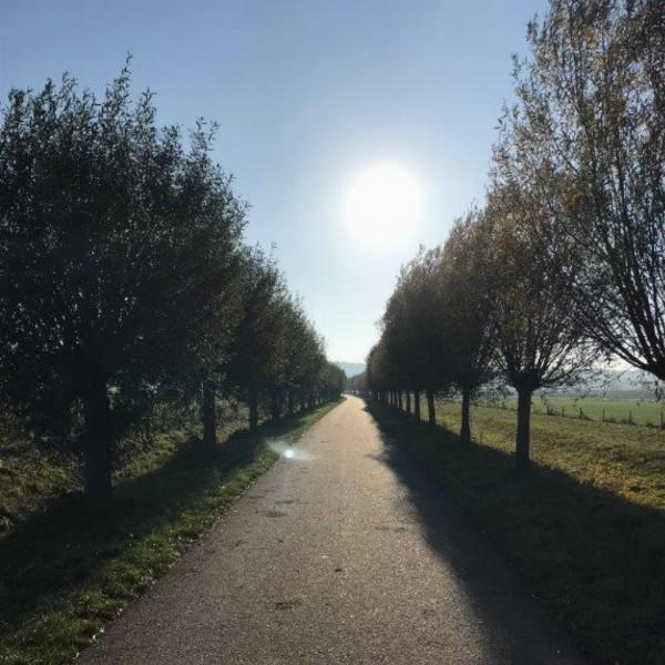 Workshop engelen meditatie en HSP (gratis) | Nijmegen