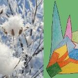 Winterwarme kruiden